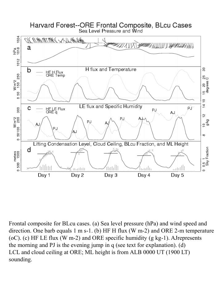 Frontal composite for BLcu cases. (a) Sea level pressure (hPa) and wind speed and