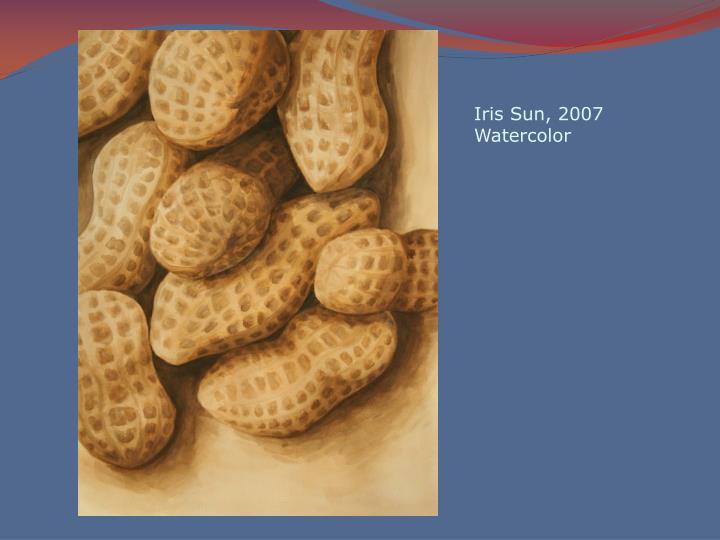 Iris Sun, 2007