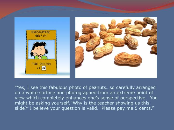 """Yes, I see this fabulous photo of peanuts…so carefully arranged on a white surface and photographed from an extreme point of view which completely enhances one's sense of perspective.  You might be asking yourself, 'Why is the teacher showing us this slide?' I believe your question is valid.  Please pay me 5 cents."""