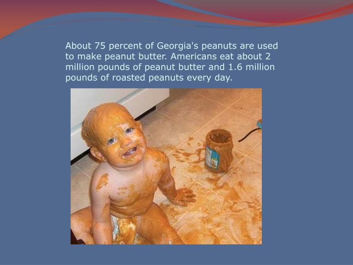 About 75 percent of Georgia's peanuts are used to make peanut butter. Americans eat about 2 million pounds of peanut butter and 1.6 million pounds of roasted peanuts every day.