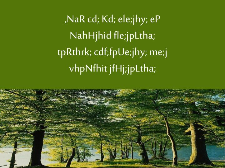 ,NaR cd; Kd; ele;jhy; eP