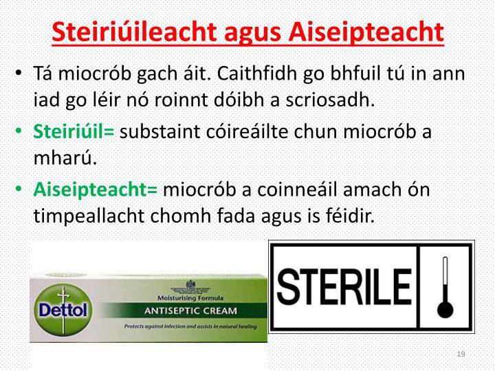 Steiriúileacht
