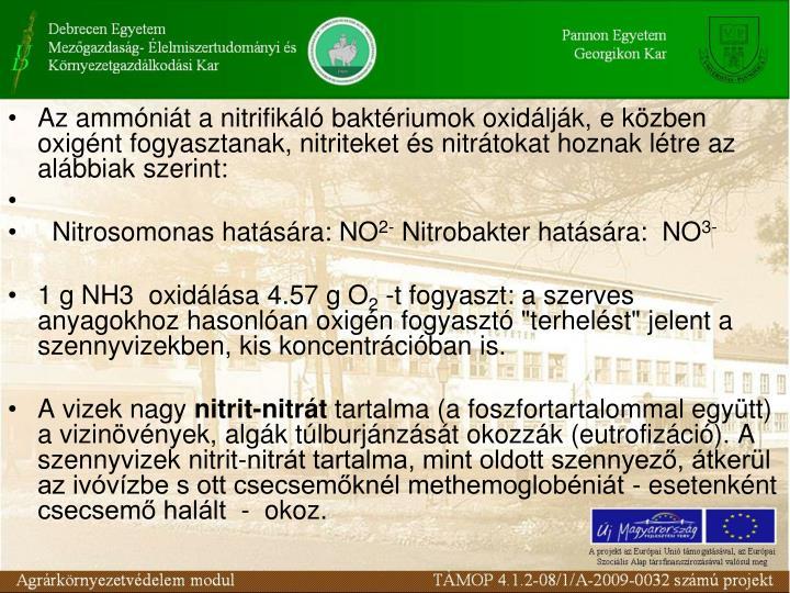 Az ammnit a nitrifikl baktriumok oxidljk, e kzben  oxignt fogyasztanak, nitriteket s nitrtokat hoznak ltre az albbiak szerint: