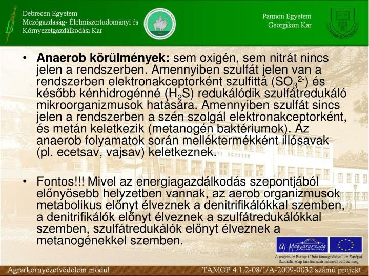 Anaerob krlmnyek:
