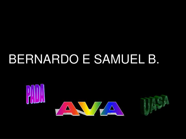 BERNARDO E SAMUEL B.