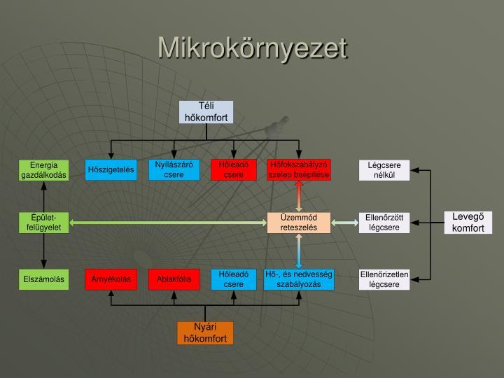 Mikrokörnyezet