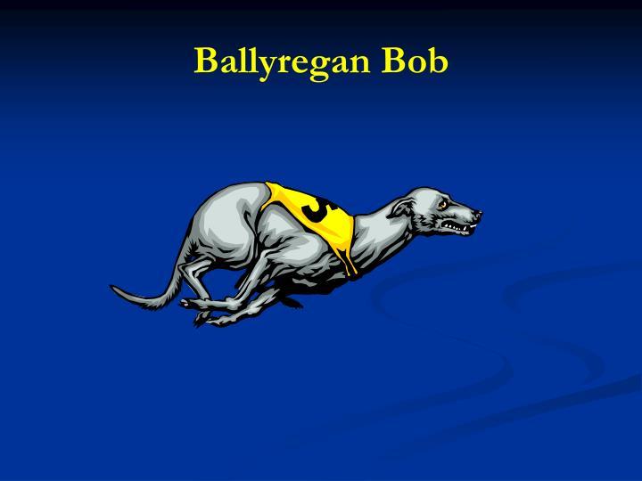 Ballyregan Bob
