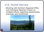 u s forest service
