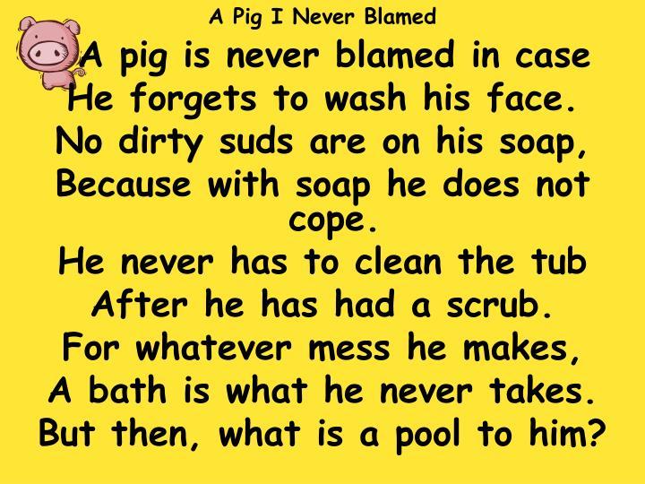 A Pig I Never Blamed