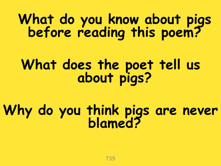 What do you know about pigs before reading this poem?
