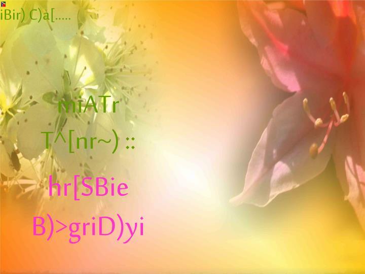 ami[ aiBir) C)a[.....