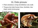 16 ordo primata