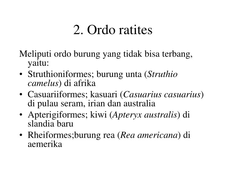 2. Ordo ratites