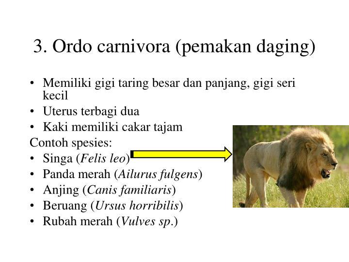 3. Ordo carnivora (pemakan daging)