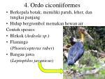 4 ordo ciconiiformes