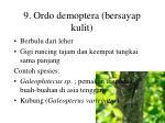 9 ordo demoptera bersayap kulit