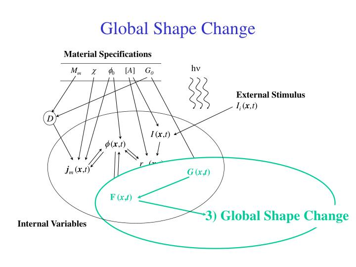 Global Shape Change