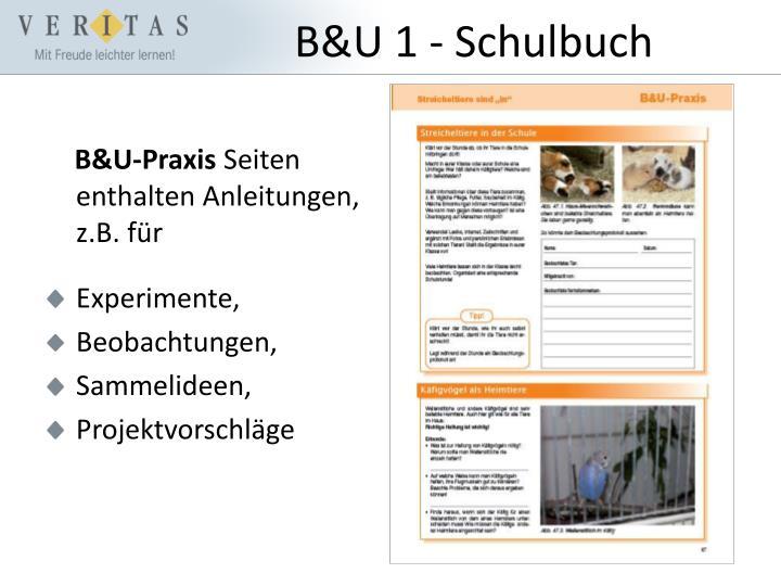 B&U-Praxis