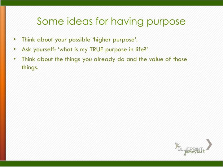 Some ideas for having purpose