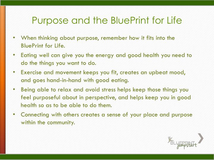 Purpose and the BluePrint for Life