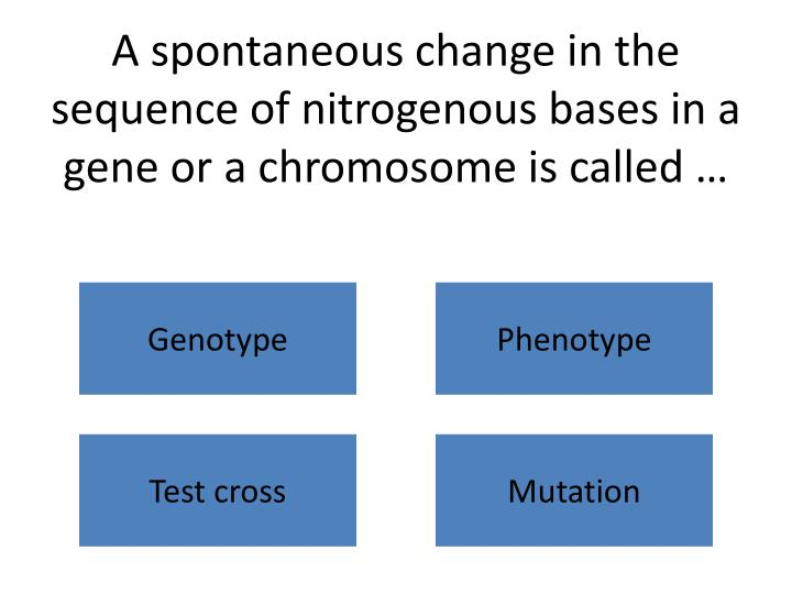 A spontaneous change in the sequence of nitrogenous bases in a gene or a chromosome is called …