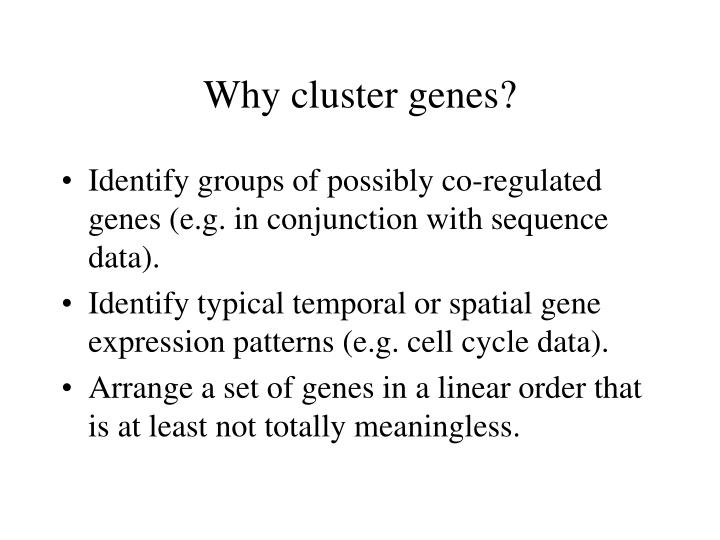 Why cluster genes?