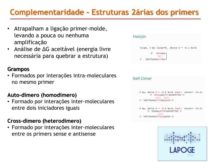Complementaridade - Estruturas 2árias dos primers