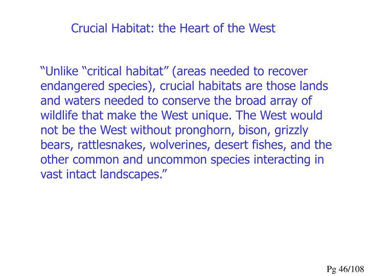 Crucial Habitat: the Heart of the West