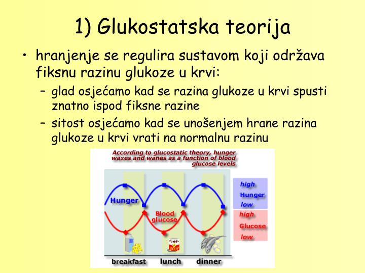 1) Glukostatska teorija