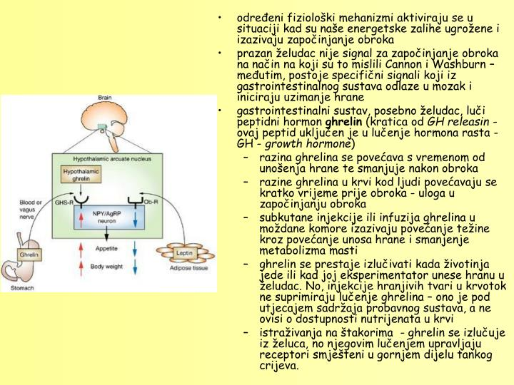 odreeni fizioloki mehanizmi aktiviraju se u situaciji kad su nae energetske zalihe ugroene i izazivaju zapoinjanje obroka
