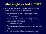 what might we test in tnt