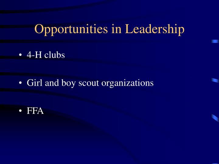Opportunities in Leadership