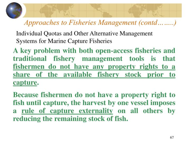 Approaches to Fisheries Management (contd……..)