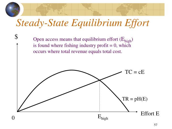 Steady-State Equilibrium Effort
