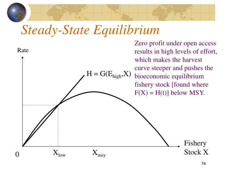 Steady-State Equilibrium