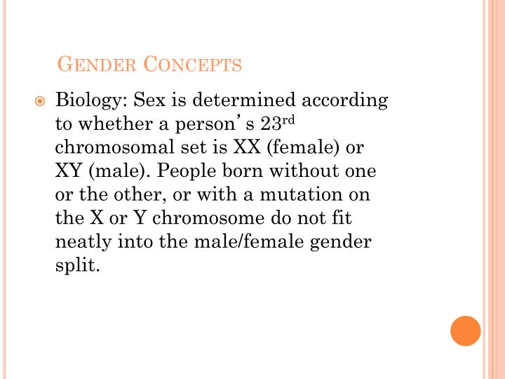Gender Concepts