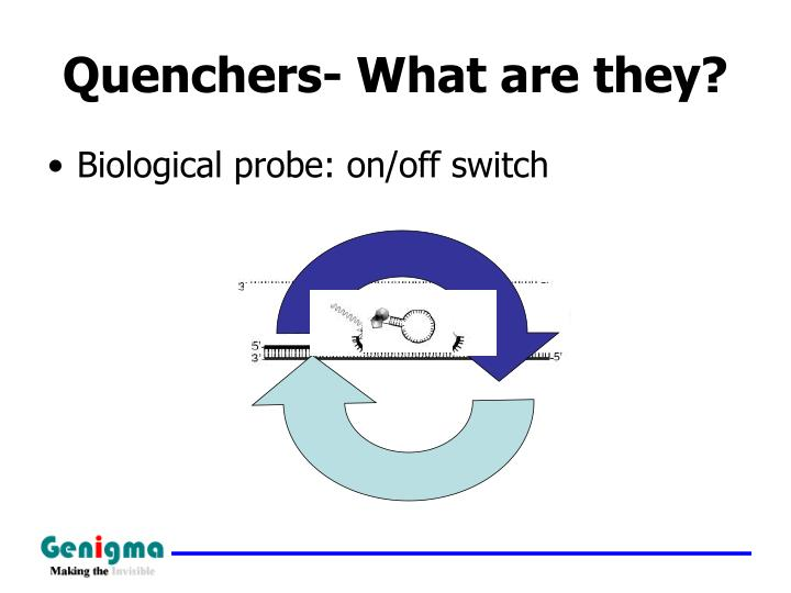 Quenchers- What are they?