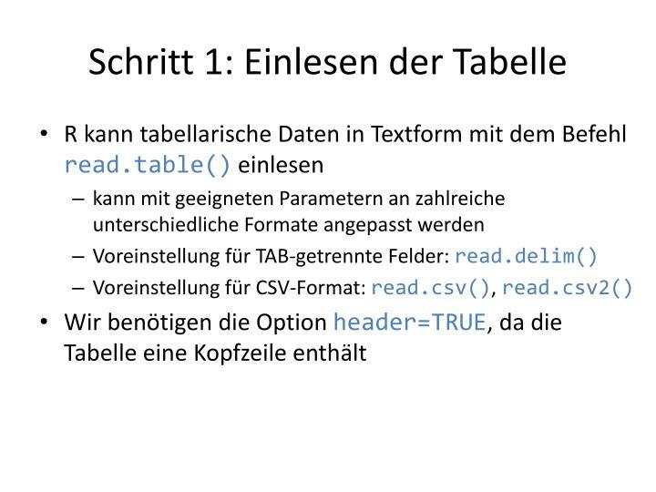 Schritt 1: Einlesen der Tabelle