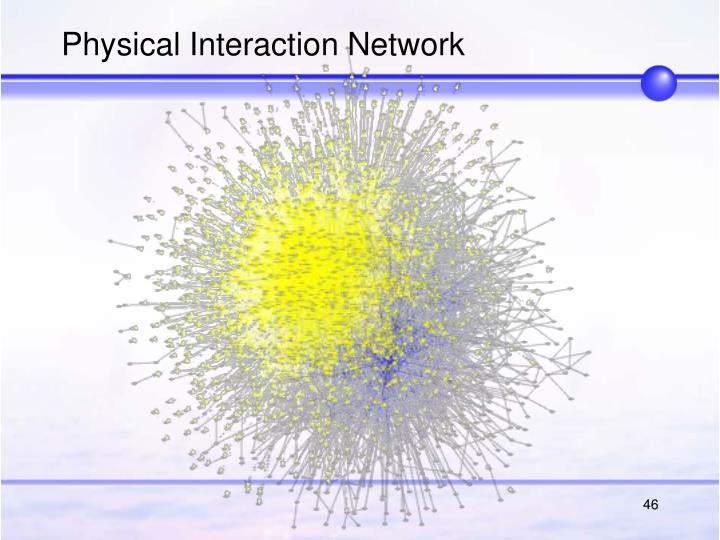 Physical Interaction Network
