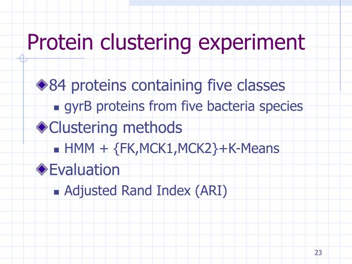 Protein clustering experiment