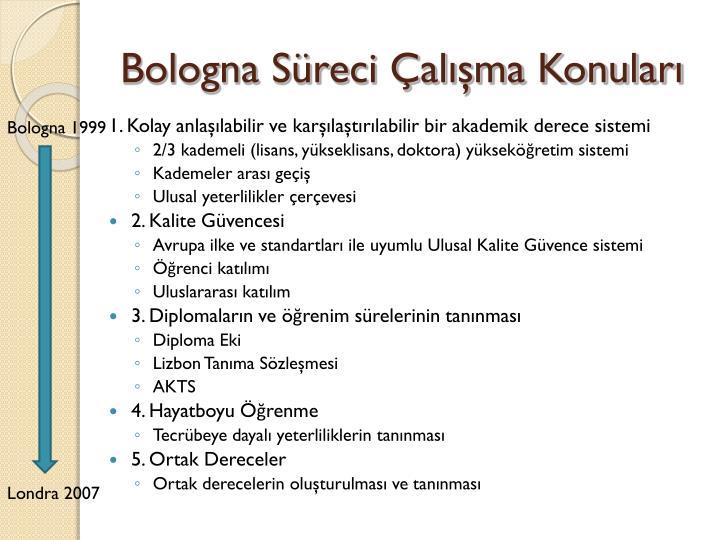 Bologna Süreci Çalışma Konuları