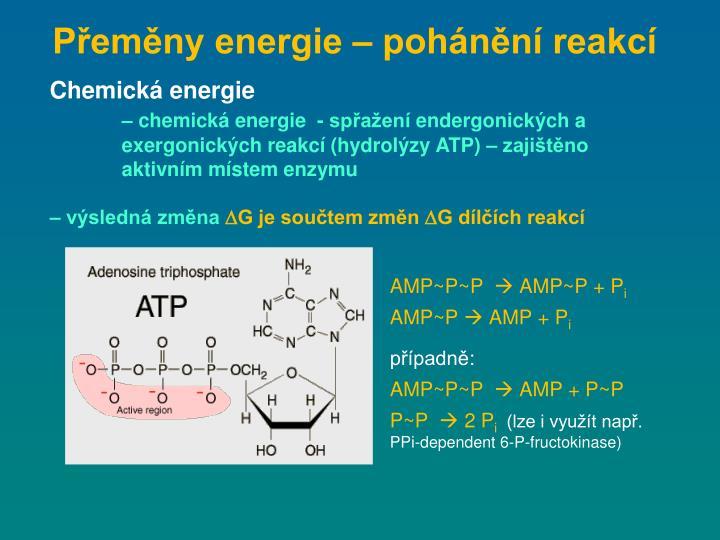 Přeměny energie – pohánění reakcí