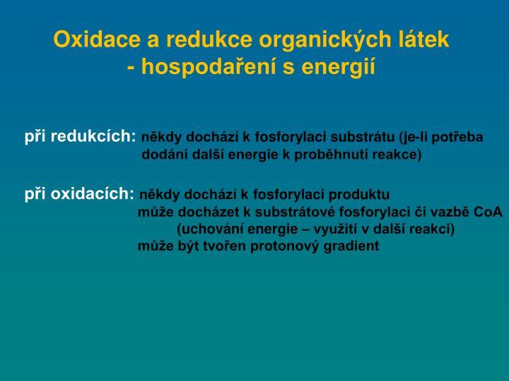 Oxidace a redukce organických látek