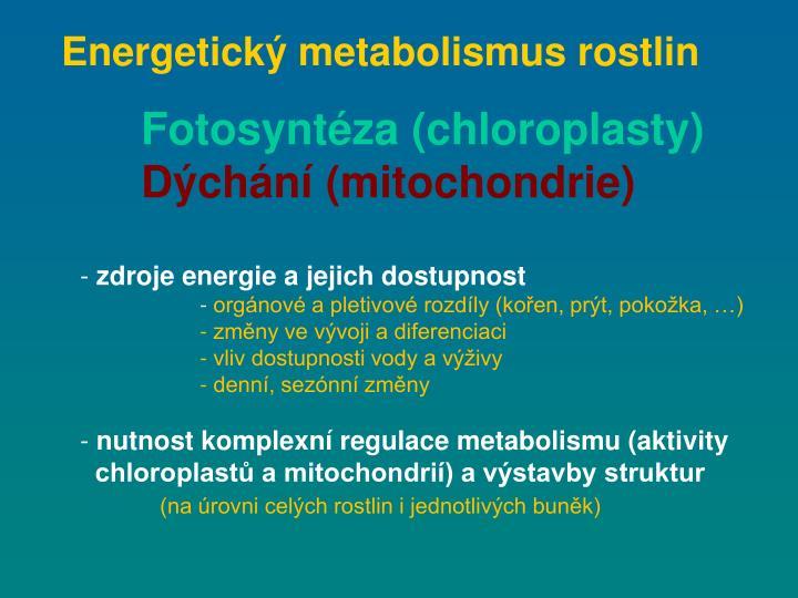 Energetický metabolismus rostlin