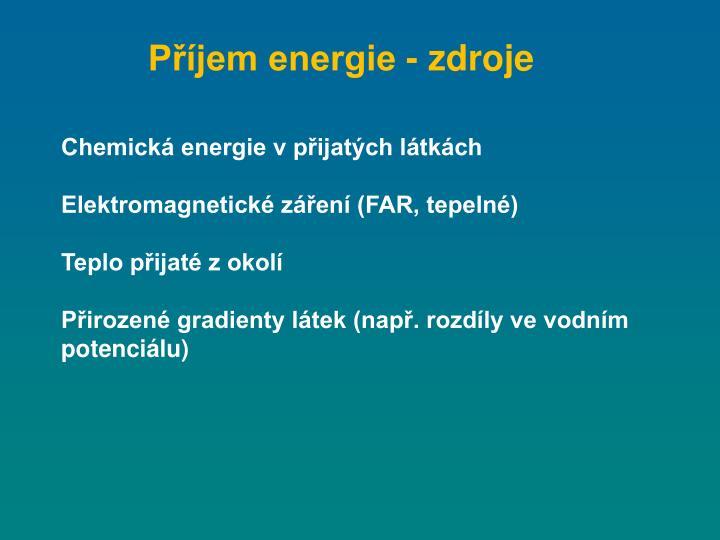 Příjem energie - zdroje