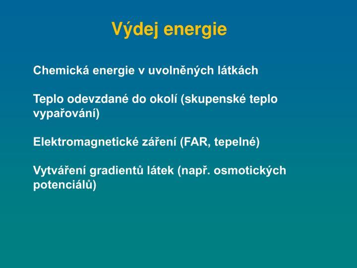 Výdej energie