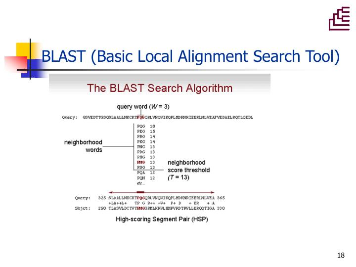 Basic Local Alignment Search Tool — Wikipédia