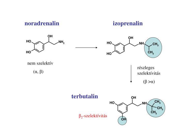 noradrenalin         izoprenalin