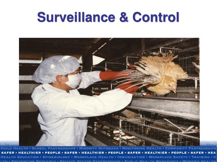 Surveillance & Control