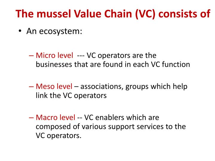 The mussel Value Chain (VC) consists of